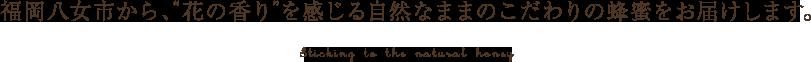 """福岡八女市から、""""花の香り""""を感じる自然なままのこだわりの蜂蜜をお届けします。"""