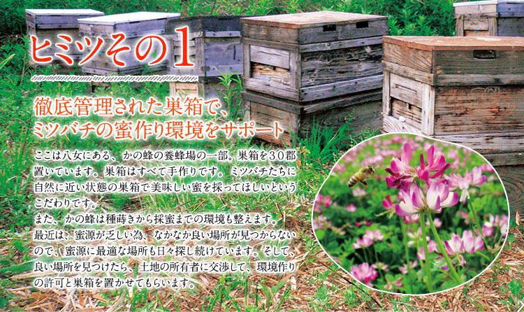 ヒミツその1 徹底管理された巣箱で、ミツバチの蜜作り環境をサポート