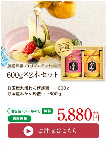 国産蜂蜜プレミアムギフト600g×2本セット