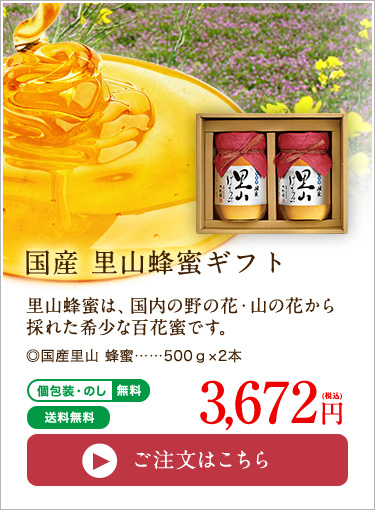 国産里山蜂蜜ギフト