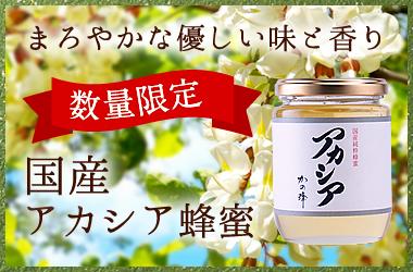 数量限定 国産アカシア蜂蜜