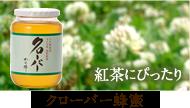 クローバー蜂蜜
