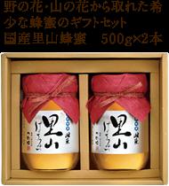 国産里山蜂蜜 500g×2本