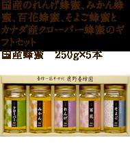 れんげ蜂蜜、みかん蜂蜜、百花蜂蜜、そよご蜂蜜とカナダ産クローバー蜂蜜のギフトセット 250g×5本